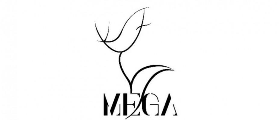 MEGA'nın eğitimleri 2020'de başlıyor!